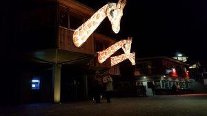 Burgers Light (6)