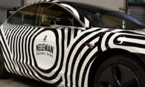 Neleman Tesla_SignAward2020 (1)